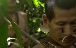 Jungles: People of the Trees